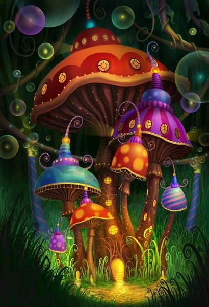 грибы волшебные фото