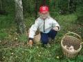 Юный грибник и подосиновик