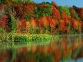 Золотое озеро, осень