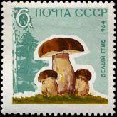 Марка Белый гриб