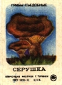 Гриб Серушка