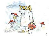 Кот грибовед