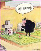 Привет, Фред!