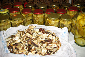 Xранение маринованных грибов
