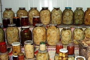 Хранение соленых грибов