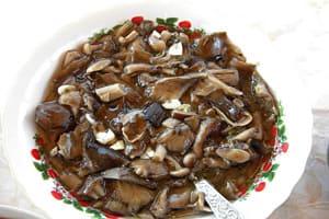 гриб мочушка фото